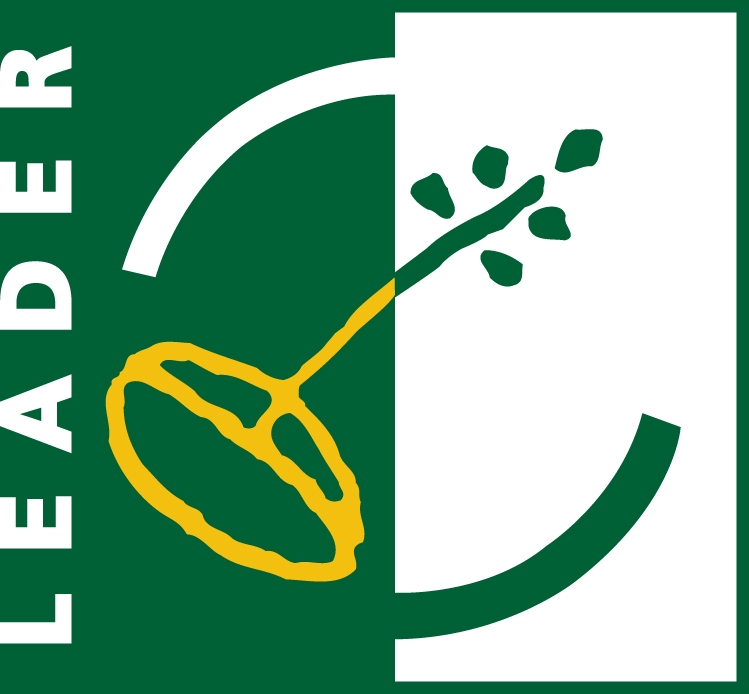 leader logo jul09